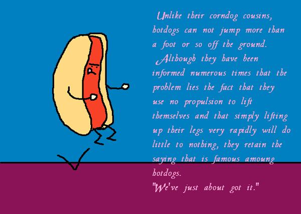 Hot Dog 07.13.05